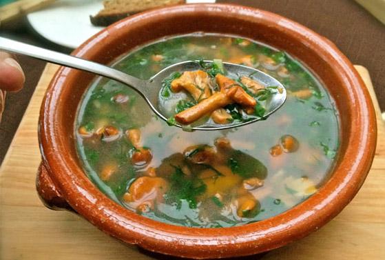 Zupa krem z kurek z cielęciną